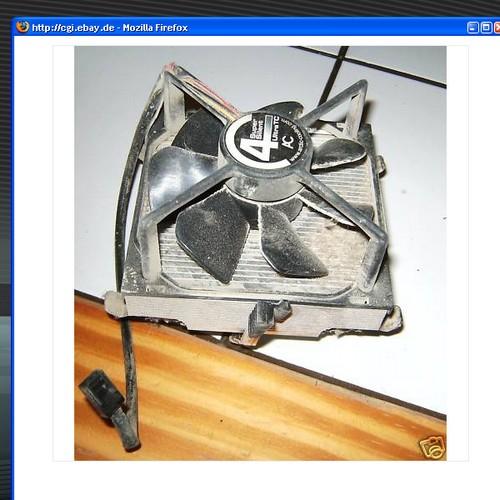 Screenshot eines eBay-Angebots