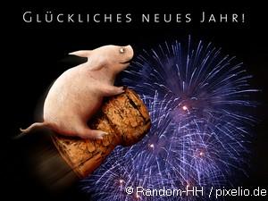 Frohes neues Jahr 2012!